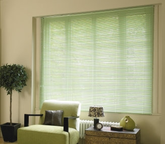 Pastel Green Window blind