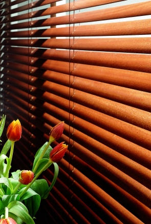 Sugar Maple Express Window blind