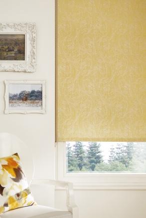Baize Gold Window blind