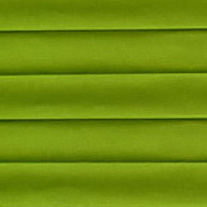 Seinna Grass From 52 Euro - Pleated Blinds