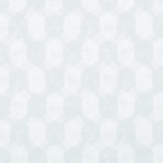 ARENA-ROLLER-RipleySteel_blind